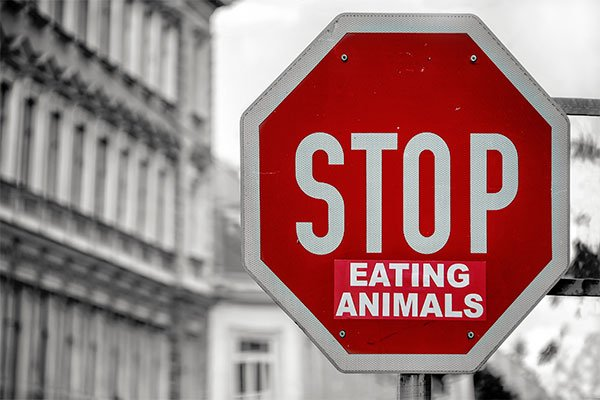 stop-comer-animales